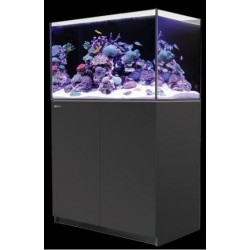 Reefer 250 – Negro (Red Sea)
