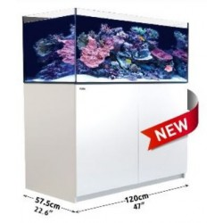 Reefer XL 425 Blanco (Red Sea)