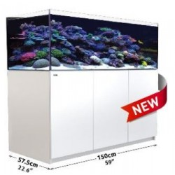 Reefer XL 525 Blanco (Red Sea)