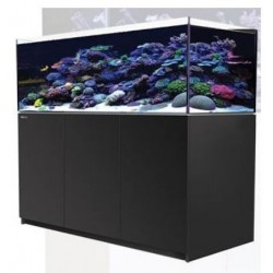 Reefer XL 525 Negro (Red Sea)
