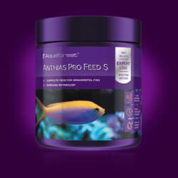 ANTHIAS PRO FEED S (Aquaforest)