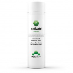 Activaté 125 ml.(Aquavitro)