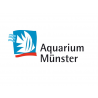 Aquarium Munster